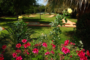 ACACIA RESORT_ MINI GOLF